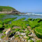 Ruta de una semana por las mejores playas de la costa de Cantabria