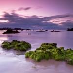 Noja y sus playas