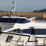 Rutas de Naturaleza en barco en Santander